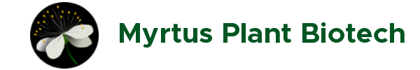 Logo - Myrtus Plant Biotech