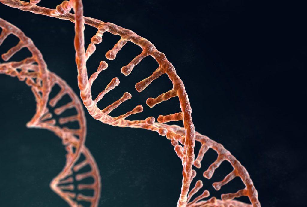 Teste de DNA - Myrtus Plant Biotech